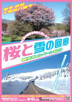 桜と雪の回廊 観光キャンペーン2016ポスター