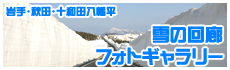 雪の回廊フォトギャラリー