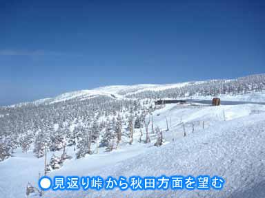雪の回廊イメージ1