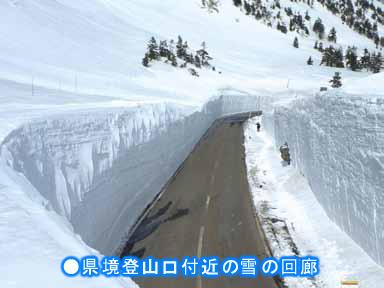 雪の回廊イメージ2